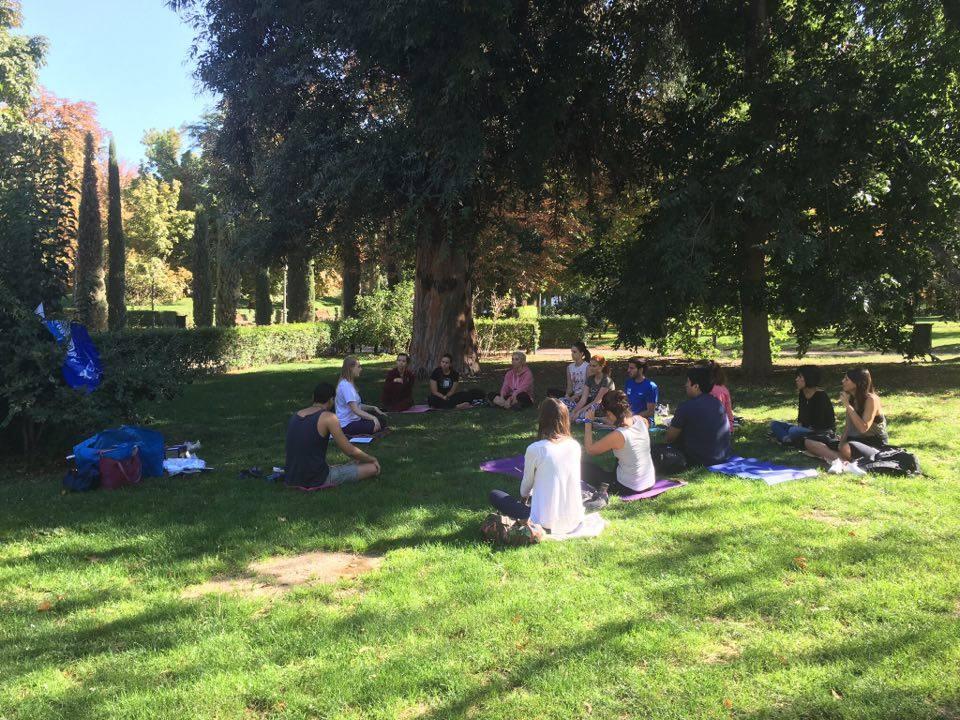 meditation-in-retiro-park_mini-pipo-spain